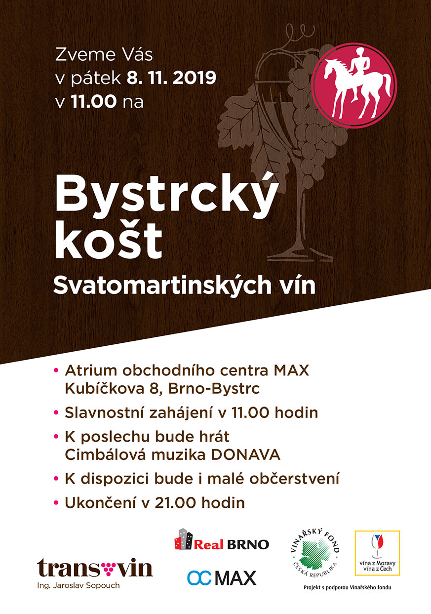 SVM_Bystrcky_kost_19_web